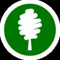 Csillag-VV Kft. – Az erdészeti szakirányító